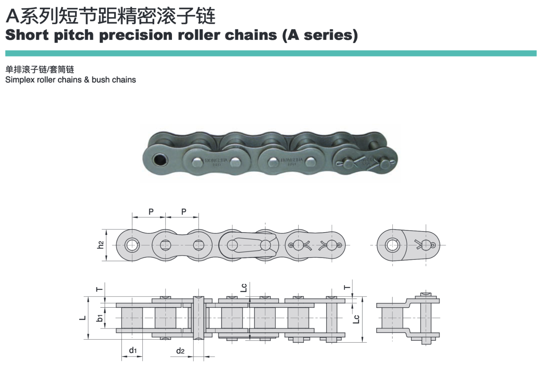 Precision Roller Chain for Transportation